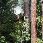Montaż anteny na drzewie w Przeczycach